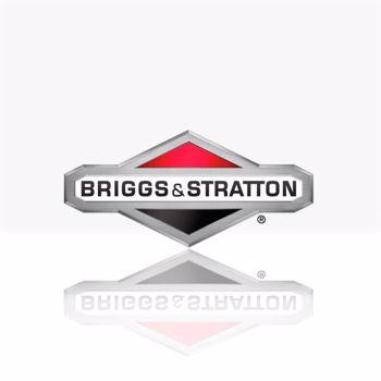 Foto para el fabricante. BRIGGS